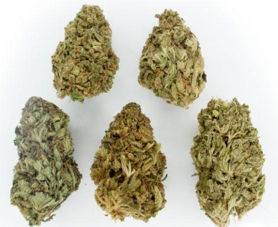 Mix & Match $99 Cannabis